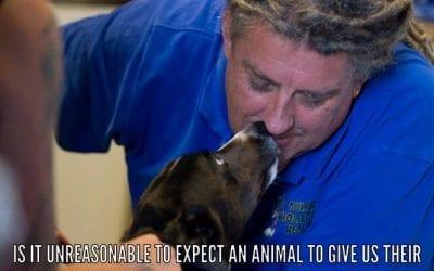 Animal Trust